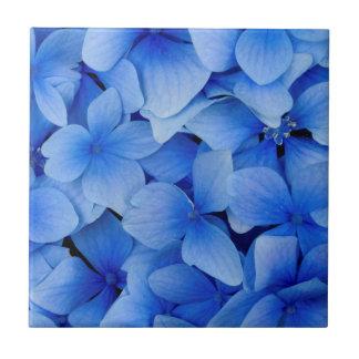 Blue Hydrangea Flowers Small Square Tile