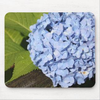 Blue Hydrangea Mousepads