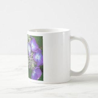 Blue Hydrangea Mugs