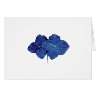 Blue hydrangea note card