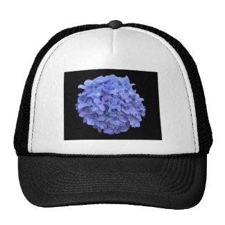 Blue Hydrangea on a Black Background Trucker Hats