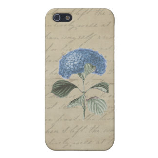 Blue Hydrangea on Vintage Calligraphy iPhone 5 Covers