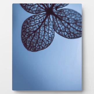 Blue Hydrangea Plaque