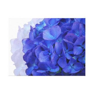 Blue Hydrangea Wrapped Canvas Canvas Print
