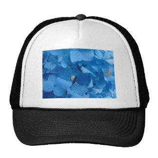 Blue Hydrangeas Cap