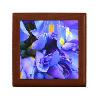 Blue Iris flowers Gift Box