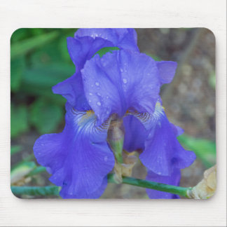 Blue iris mousepad