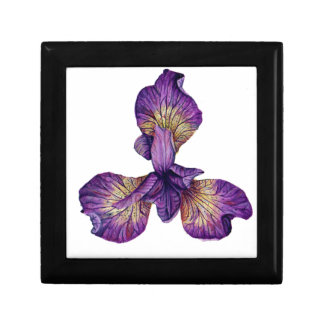 Blue Iris Siberica Flower Gift Box