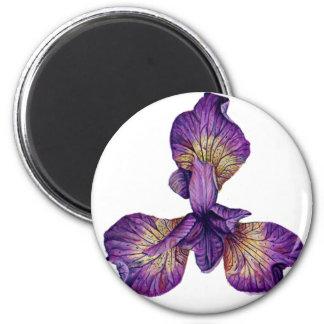 Blue Iris Siberica Flower Magnet
