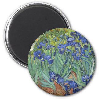 Blue Irises Magnet