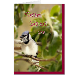Blue Jay 6435 Secret Sister- customize Greeting Card