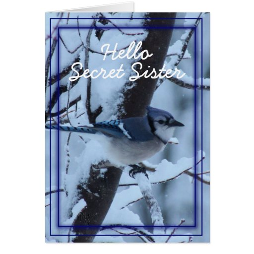 Blue Jay 7133- customize any occasion Card