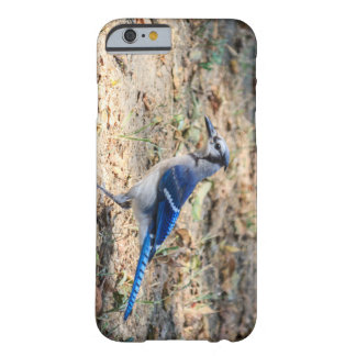 Blue Jay Barely There iPhone 6 Case