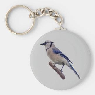Blue Jay Bird Key Ring