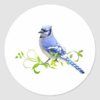 Blue Jay Bird Round Sticker