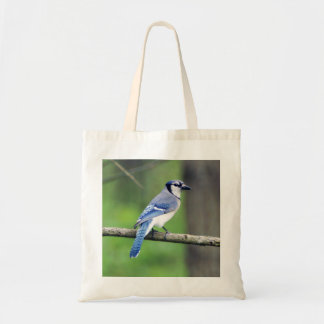 Blue Jay Budget Tote Bag