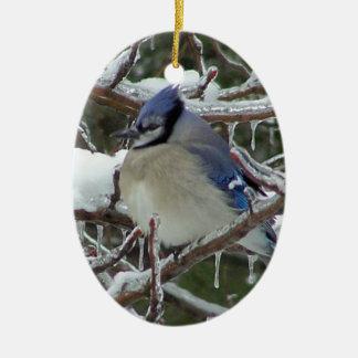 Blue-Jay Christmas Ceramic Ornament