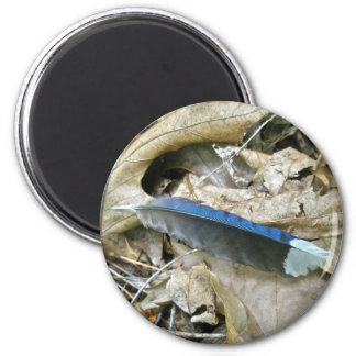 Blue Jay Feather Coordinating Items 6 Cm Round Magnet