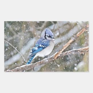 Blue Jay in a Snowstorm Rectangular Sticker