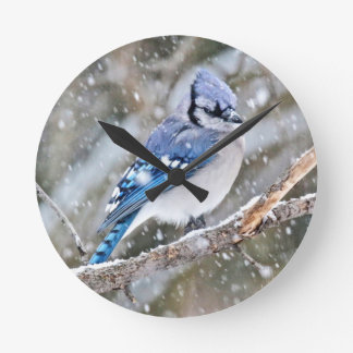 Blue Jay in a Snowstorm Round Clock