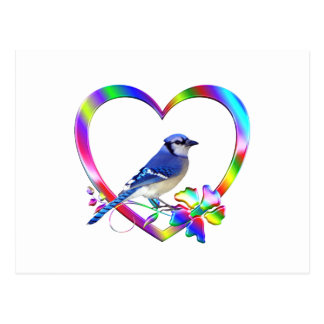 Blue Jay in Colorful Heart Postcard