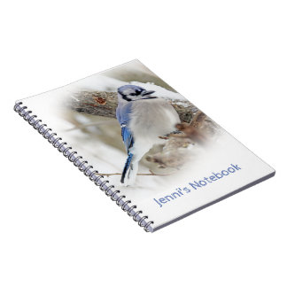 Blue Jay in Winter Snow Notebooks