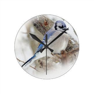 Blue Jay in Winter Snow Round Clock