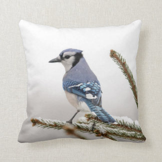 Blue Jay in Winter Throw Pillow