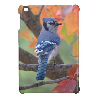 Blue Jay iPad Mini Case