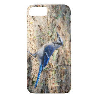 Blue Jay iPhone 7 Case