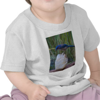 Blue Jay on crystal Tshirts
