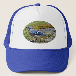 Blue Jay On Granite Outcropping With Moss On Edge Trucker Hat