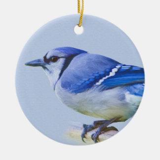Blue Jay Ornament