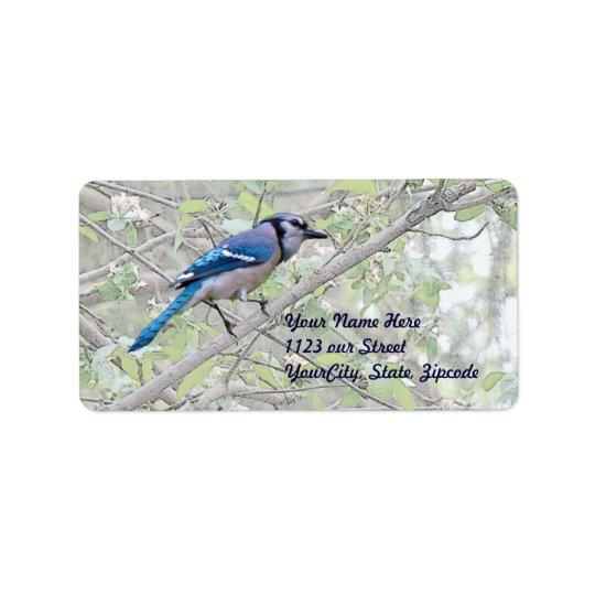 Blue Jay Songbird Address Label