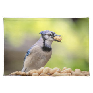 Blue jay with a peanut placemat