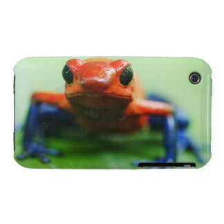 Blue Jean Frog iPhone 3 Covers