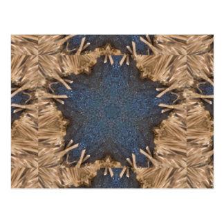 Blue Kaleidoscope Star Wicker Background Postcard