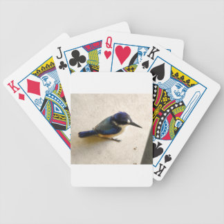 BLUE KINGFISHER QUEENSLAND AUSTRALIA BICYCLE PLAYING CARDS