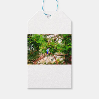 BLUE KINGFISHER QUEENSLAND AUSTRALIA GIFT TAGS