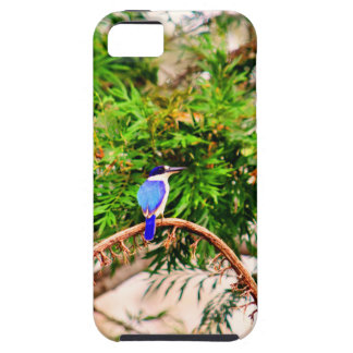 BLUE KINGFISHER QUEENSLAND AUSTRALIA iPhone 5 COVERS