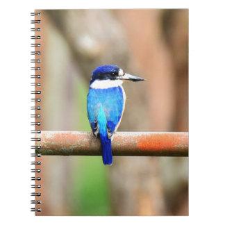 BLUE KINGFISHER QUEENSLAND AUSTRALIA NOTEBOOK