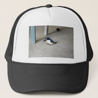 BLUE KINGFISHER QUEENSLAND AUSTRALIA TRUCKER HAT