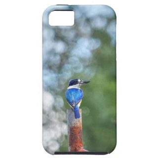BLUE KINGFISHER RURAL QUEENSLAND AUSTRALIA iPhone 5 CASE