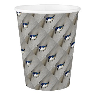 BLUE KINGFISHER RURAL QUEENSLAND AUSTRALIA PAPER CUP