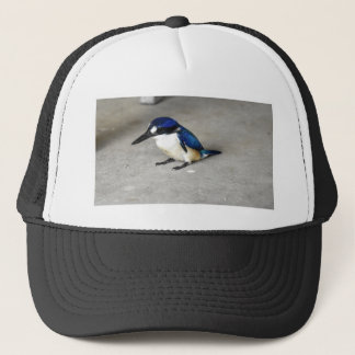 BLUE KINGFISHER RURAL QUEENSLAND AUSTRALIA TRUCKER HAT