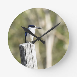 BLUE KINGFISHER RURAL QUEENSLAND AUSTRALIA WALLCLOCK