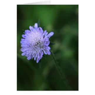 Blue Knoop-wenskaart Greeting Card