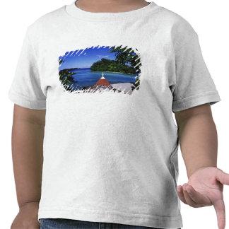 Blue Lagoon, Port Antonio, Jamaica Shirts
