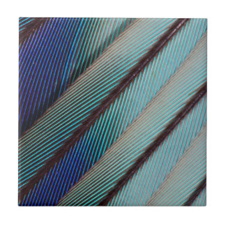 Blue Lilac Breasted Roller feather Small Square Tile