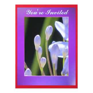 """Blue lily Of The Nile Flower 6.5"""" X 8.75"""" Invitation Card"""